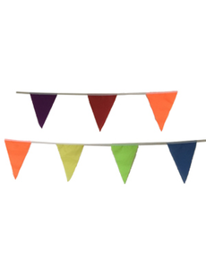 Флажная лента (Волчатник) цветная 10м, фото 1